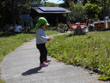 心地よい芝生♪1歳組。